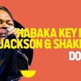 SUNSET LIVE • Habaka K.F.Jackson & Shakeblues